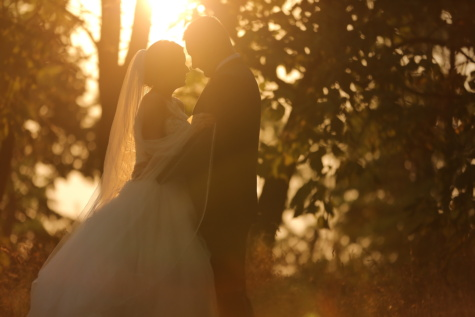 sunny, hug, sunshine, groom, bride, sunrays, sunset, sun, love, wedding