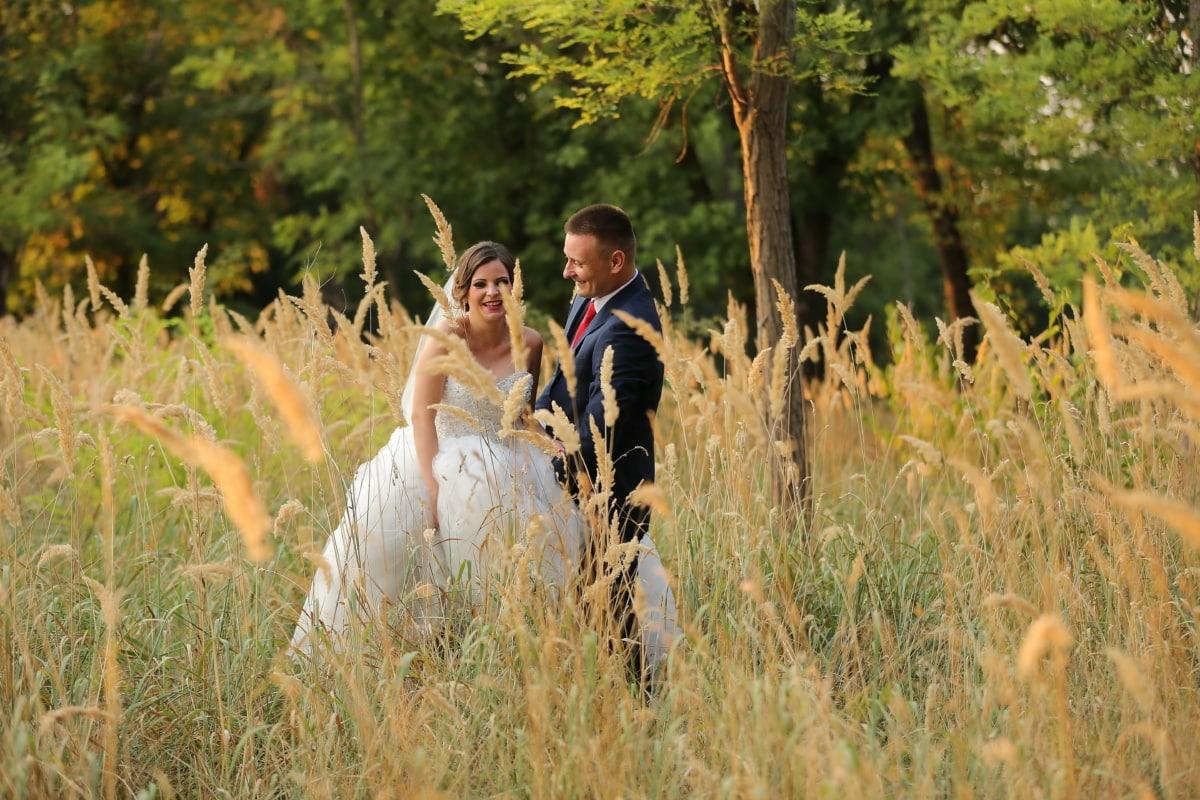 rừng, hoang dã, cảnh quan, chú rể, cô dâu, cỏ, Cặp vợ chồng, Yêu, lĩnh vực, Cô bé