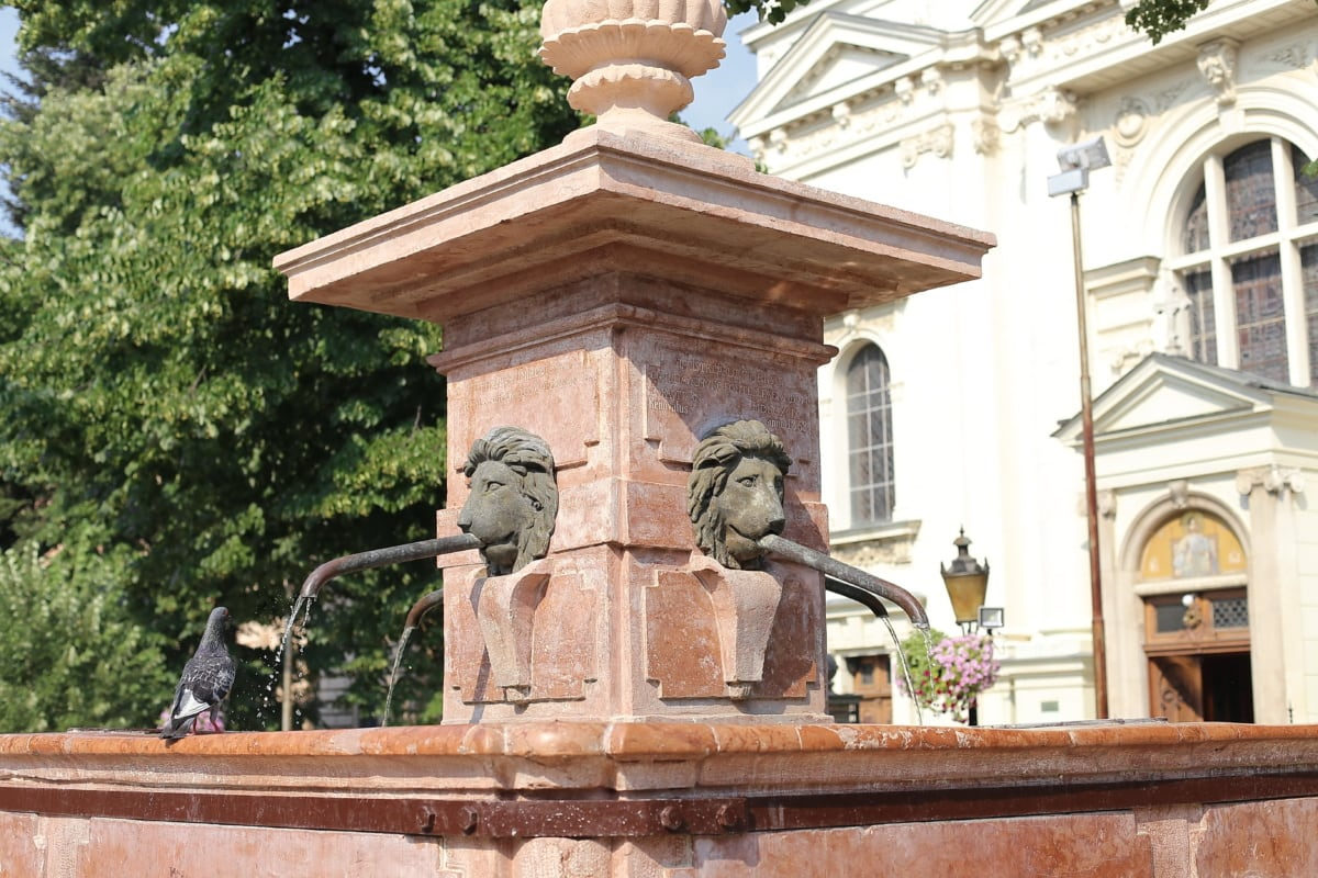 Pigeon, marbre, Fontaine, statue de, sculpture, architecture, structure, Création de, colonne, monument