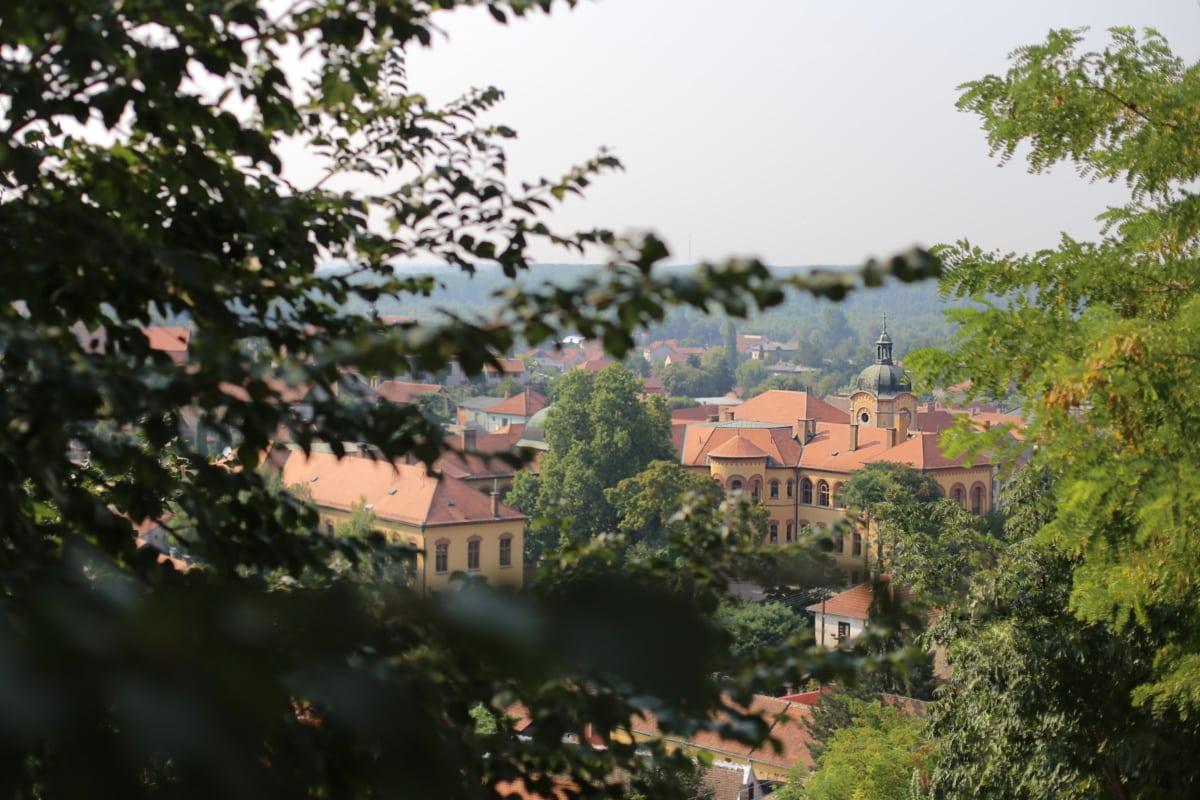 Centre ville, Panorama, ville, toit, arbre, Création de, architecture, Ville, vieux, maison