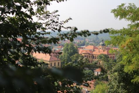 stadens centrum, panorama, staden, tak, träd, Skapa, arkitektur, staden, gamla, hus
