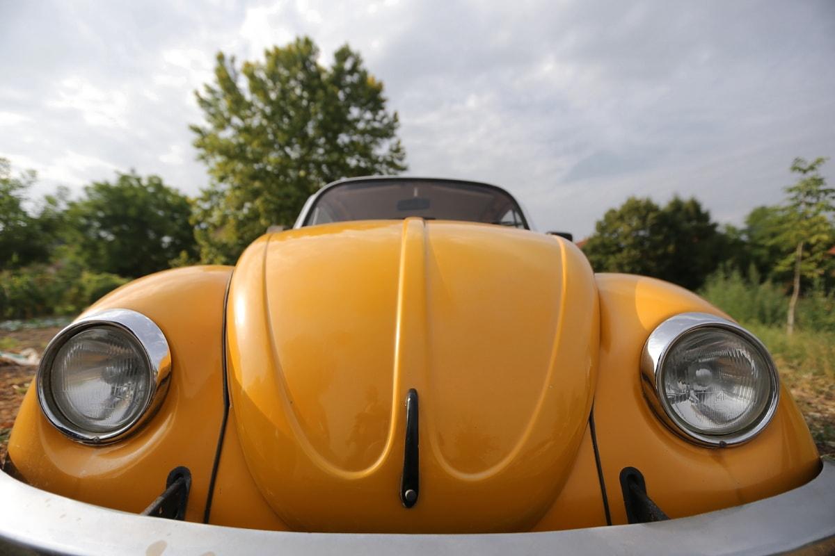 Autos, Scheinwerfer, Windschutzscheibe, Orange gelb, Klassiker, Auto, Fahrzeug, Cabrio, Chrom, Haube
