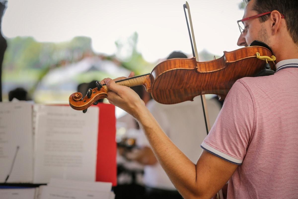 violin, music, musician, orchestra, ballet, opera, guitar, musical, instrument, people