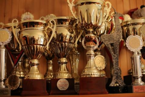 trophy,  prize, handmade, memorabilia, victory, gold, light, interior design, vintage, brass