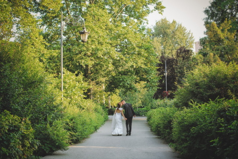 couple, kiss, wedding, park, bride, groom, garden, tree, trees, landscape
