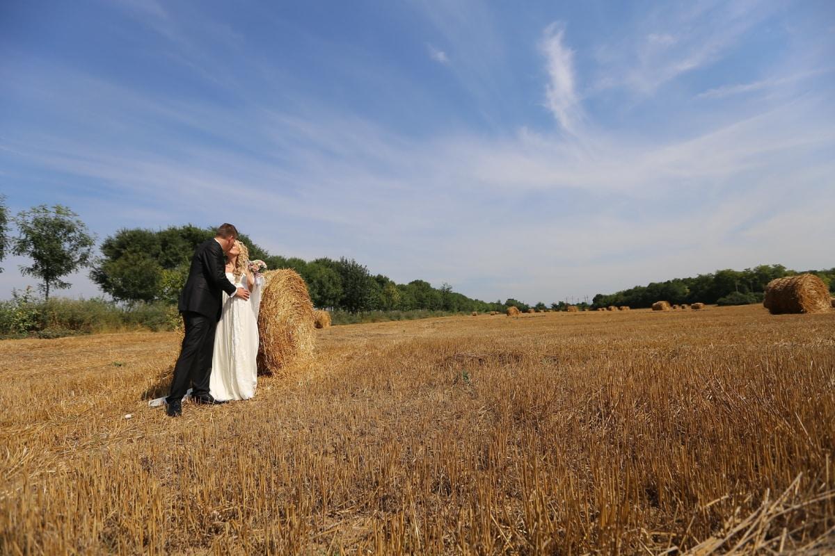 groom, wheatfield, kiss, bride, summer, bale, landscape, hay, agriculture, wheat