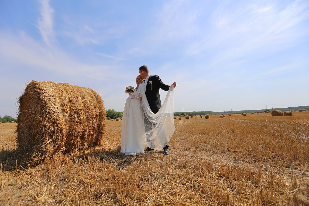 필드, 신랑, 신부, 농업, 보 리, 웨딩, 신사, 웨딩 드레스, 댄스, 건초