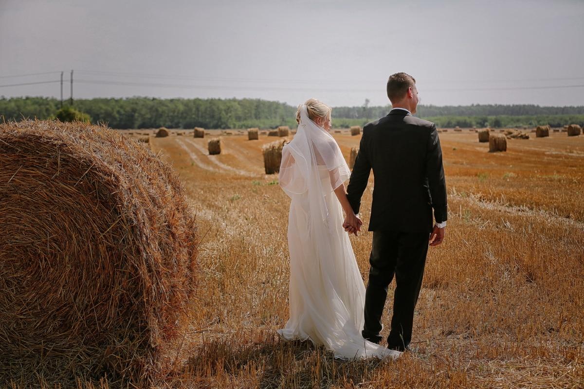 field, agricultural, hay field, groom, bride, haystack, hay, rural, summer, landscape