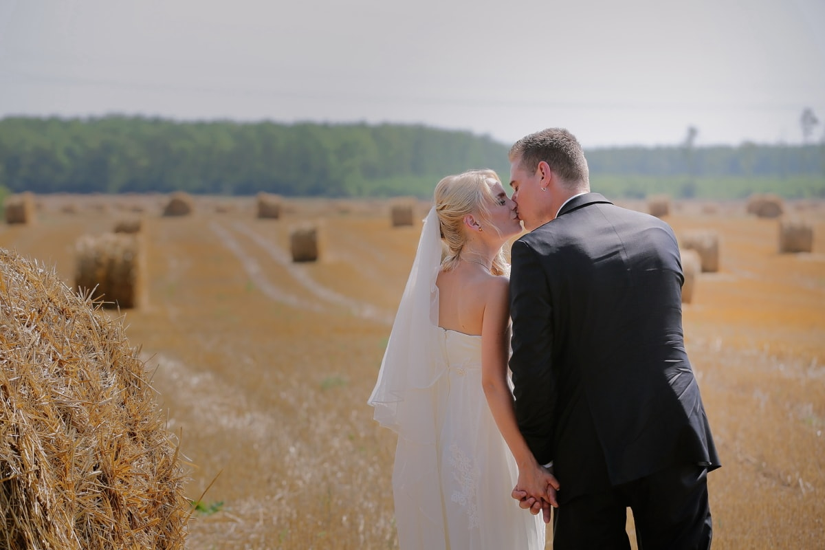 bride, broom, wheatfield, hay field, agriculture, summer, wedding, love, woman, groom
