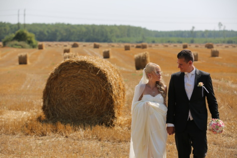 groom, bride, wheatfield, hay field, wedding bouquet, embrace, wedding dress, agriculture, feed, food