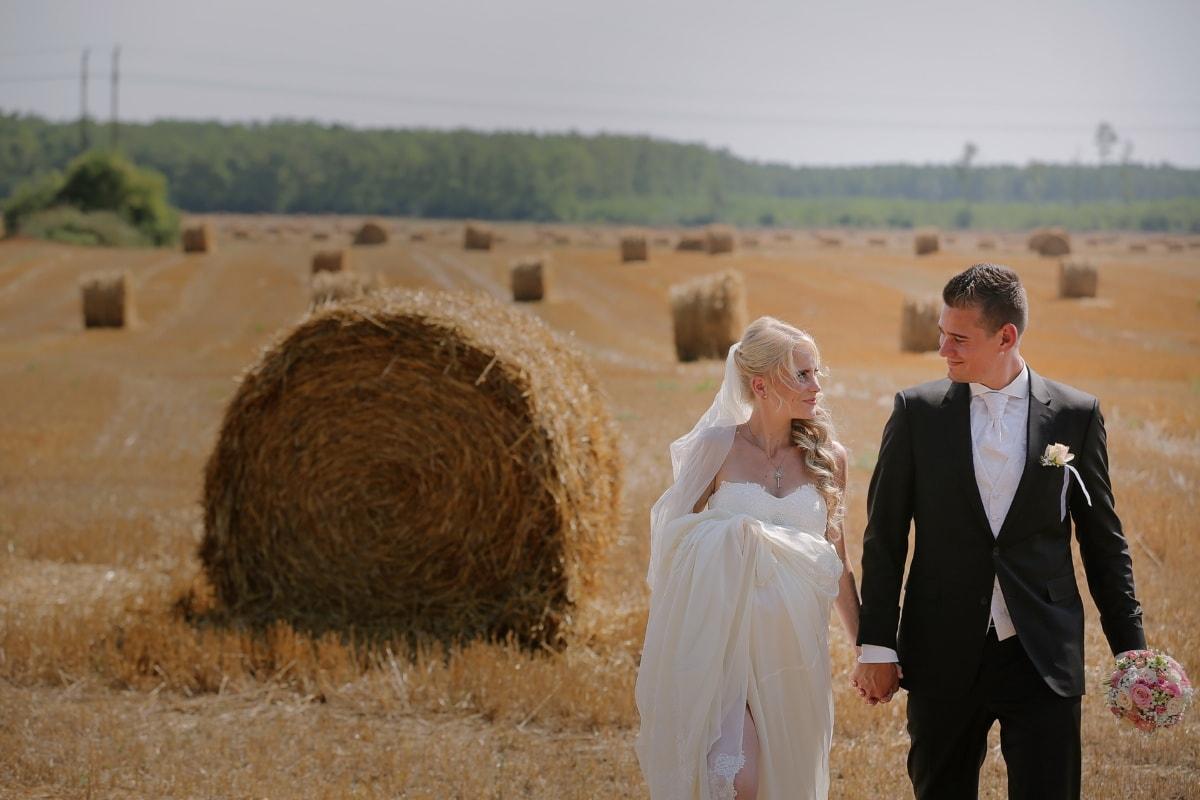 profesionálne, svadba, fotografovanie, seno lúka, letné, poľnohospodárstvo, vidieka, úroda, seno, Bale