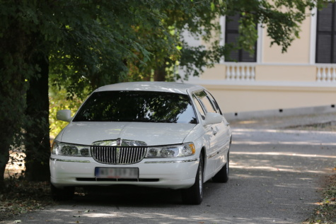 white limousine car, sedan, expensive, automobile, car, vehicle, speed, asphalt, pavement, street