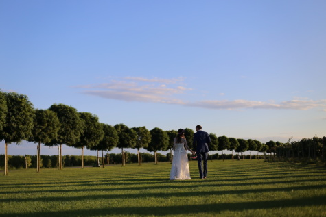 gentleman, lady, conversation, walking, vineyard, countryside, people, girl, grass, maze