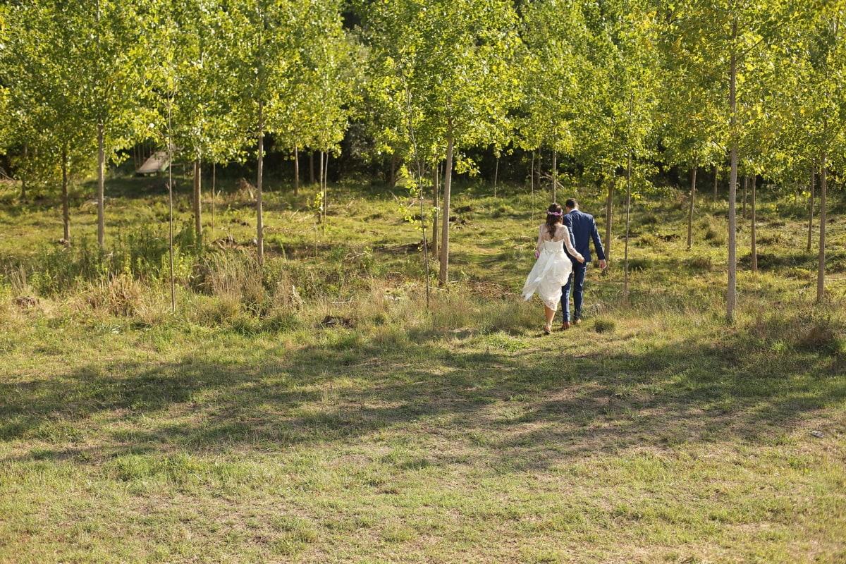 groom, bride, forest, hike, grass, tree, leaf, nature, landscape, wood