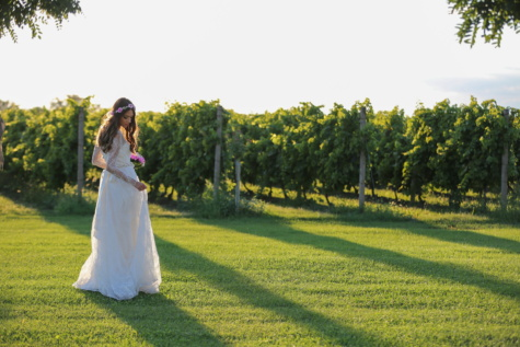 vineyard, wedding dress, wedding bouquet, bride, wedding, tree, grass, woman, girl, nature