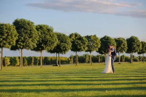 green, field, garden, groom, fair weather, bride, kiss, girl, tree, wedding