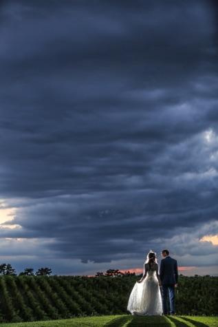 topo de colina, Panorama, vinhedo, noiva, felicidade, noivo, casamento, pôr do sol, atmosfera, pessoas