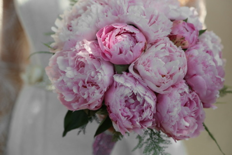 wedding bouquet, roses, pinkish, peony, wedding dress, flower, bouquet, pink, rose, wedding