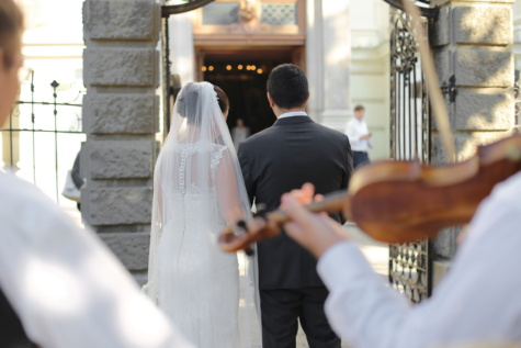 bride, woman, man, groom, violin, wedding, people, love, ceremony, veil