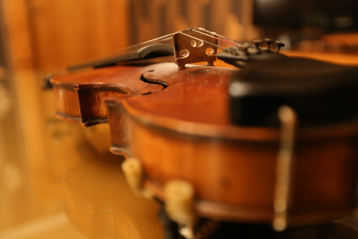violin, antiquity, instrument, music, detail, wooden, wood, indoors, classic, blur