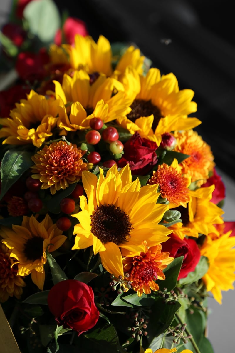 bouquet de mariage, tournesol, été, flore, feuille, fleur, bouquet, nature, brillant, jardin