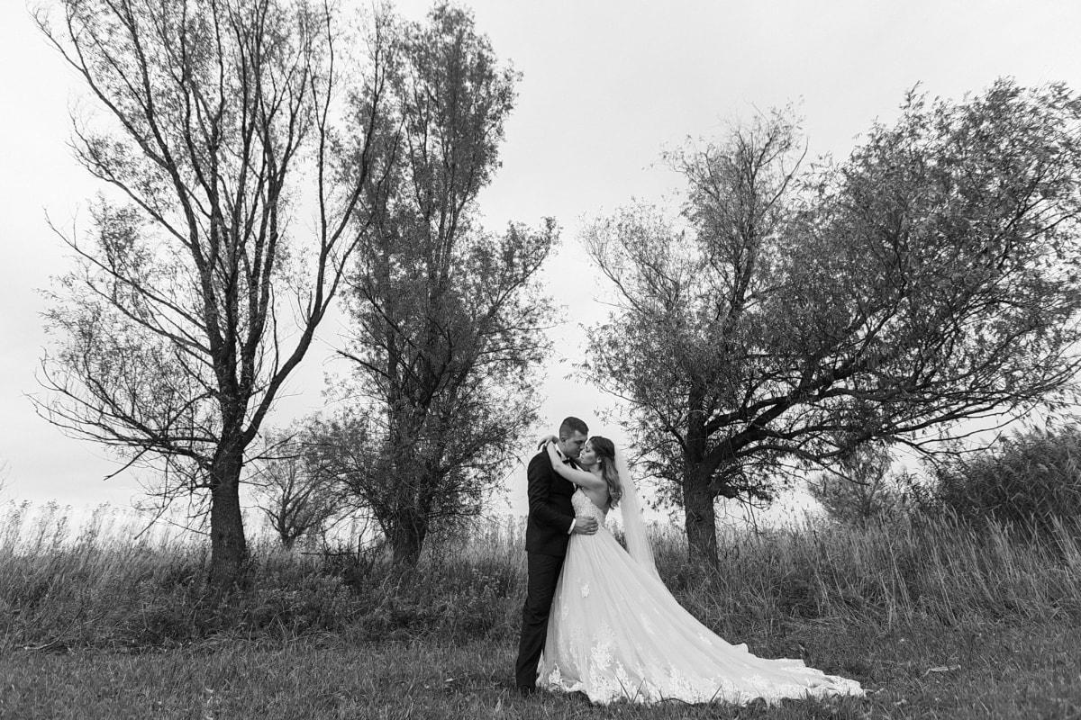Bäume, Braut, Hochzeit, Hochzeitskleid, Natur, Umarmung, Umarmung, schwarz und weiß, Monochrom, Dame
