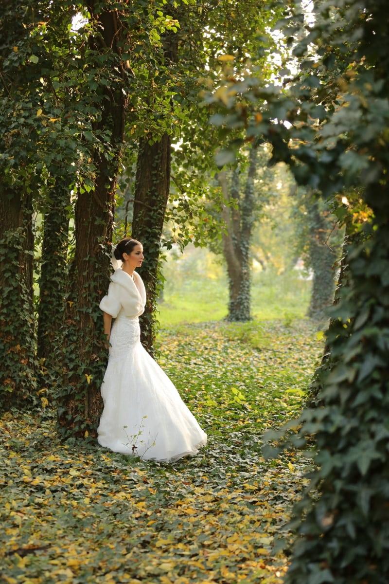 bride, forest, glamour, elegance, wedding dress, dress, couple, engagement, love, wedding
