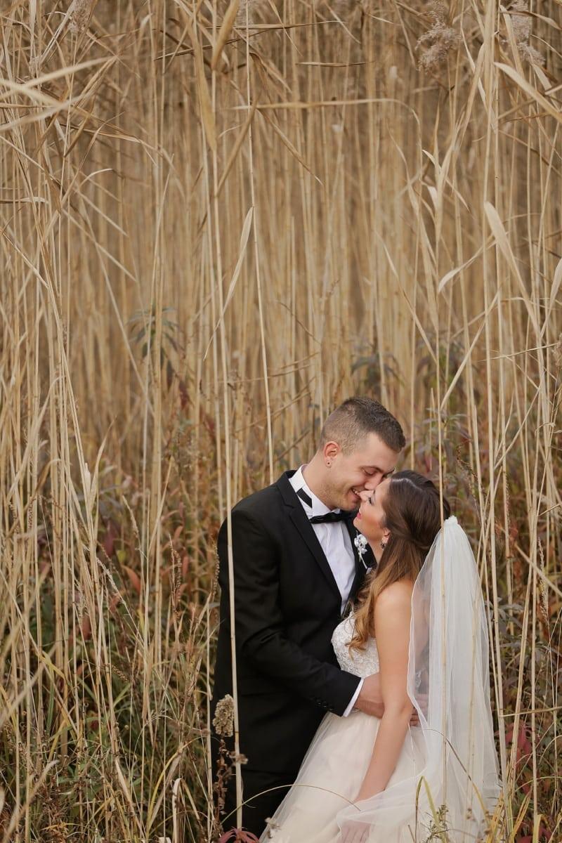 profesionalno, vjenčanje, fotografije, grljenje, odijelo, poljubac, vjenčanica, leptir mašna, ljubav, priroda