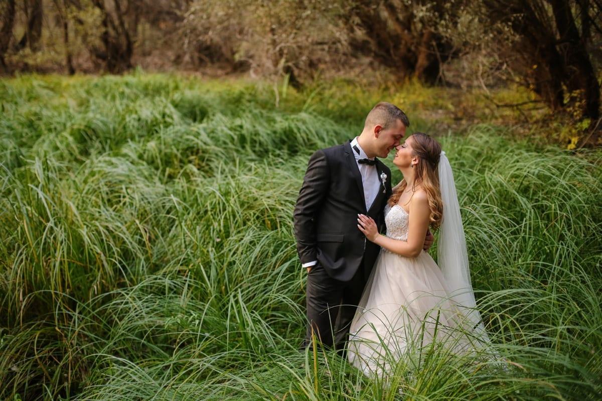 les, nevěsta, ženich, divočina, svatební šaty, oblek, oblečení, tráva, osoba, louka