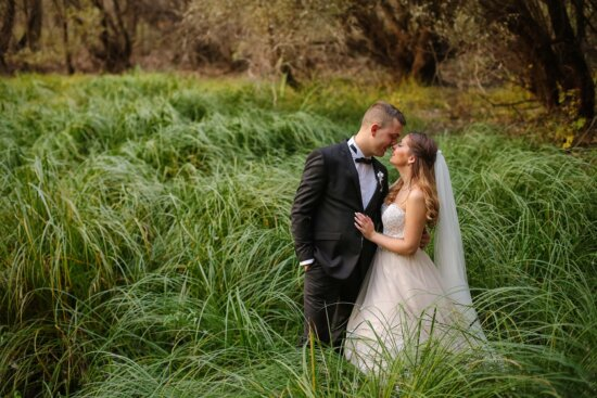 forest, bride, groom, wilderness, wedding dress, suit, outfit, grass, person, meadow