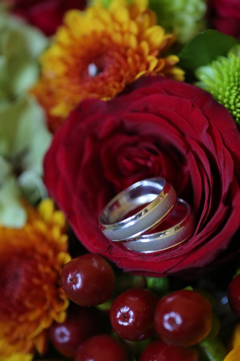 platinum, bague de mariage, macro, bouquet, fleur, Rose, amour, nature, romance, flore
