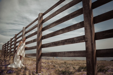countryside, fence, bride, wedding dress, landscape, posing, architecture, wood, outdoors, nature