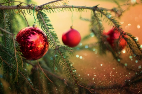 vánoční strom, dekorativní, pobočky, ornament, kola, svátek, dekorace, sezóny, strom, oslava