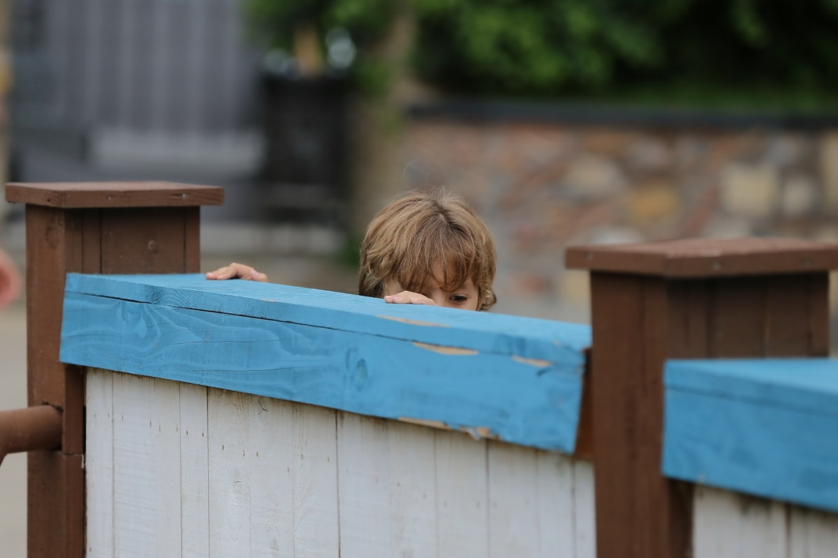 playing, child, hiding, boy, childhood, outdoors, wood, leisure, people, fence