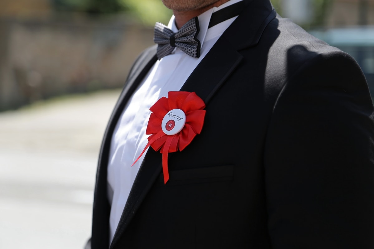 costume, nœud papillon, costume de smoking, accessoire, homme, parrain, entreprise, vêtements, vêtement, professionnel