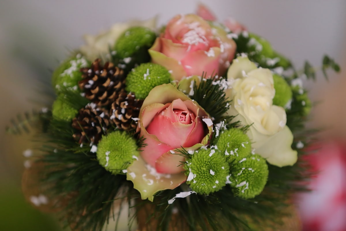roses, snowflakes, conifers, bouquet, arrangement, decoration, still life, flower, leaf, blur