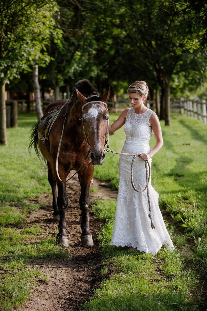 花嫁, かわいい女の子, 馬, ウェディングドレス, 種牡馬, 動物, 牧場, 田園地帯, 馬, ファーム