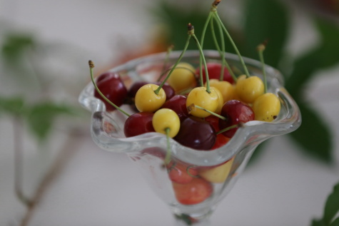 cherries, yellowish, dessert, cranberry, cherry, sweet, fruit, food, still life, leaf