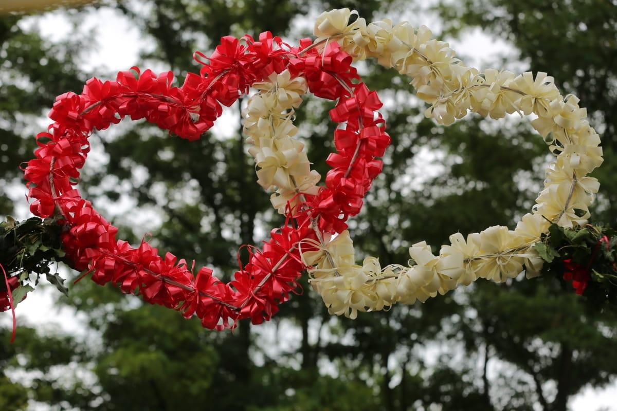 decoration, white, red, hearts, plant, love, leaf, romance, garden, color
