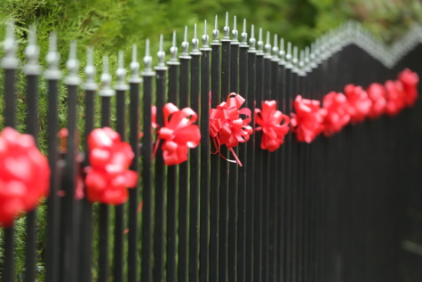 fence, decorative, fence line, backyard, outdoors, hanging, decoration, color, barrier, park