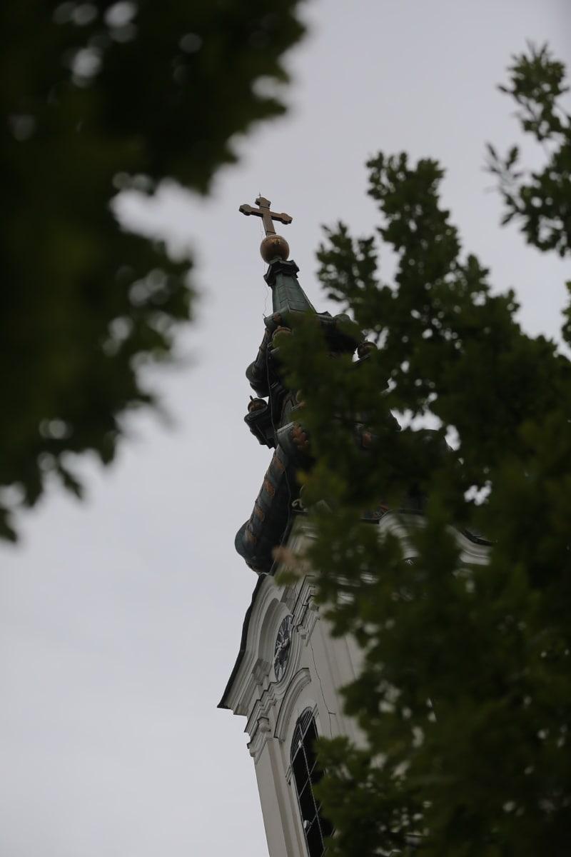 steeple, point de vue, haute, arbres, conifères, Croix, arbre, Église, religion, Ville