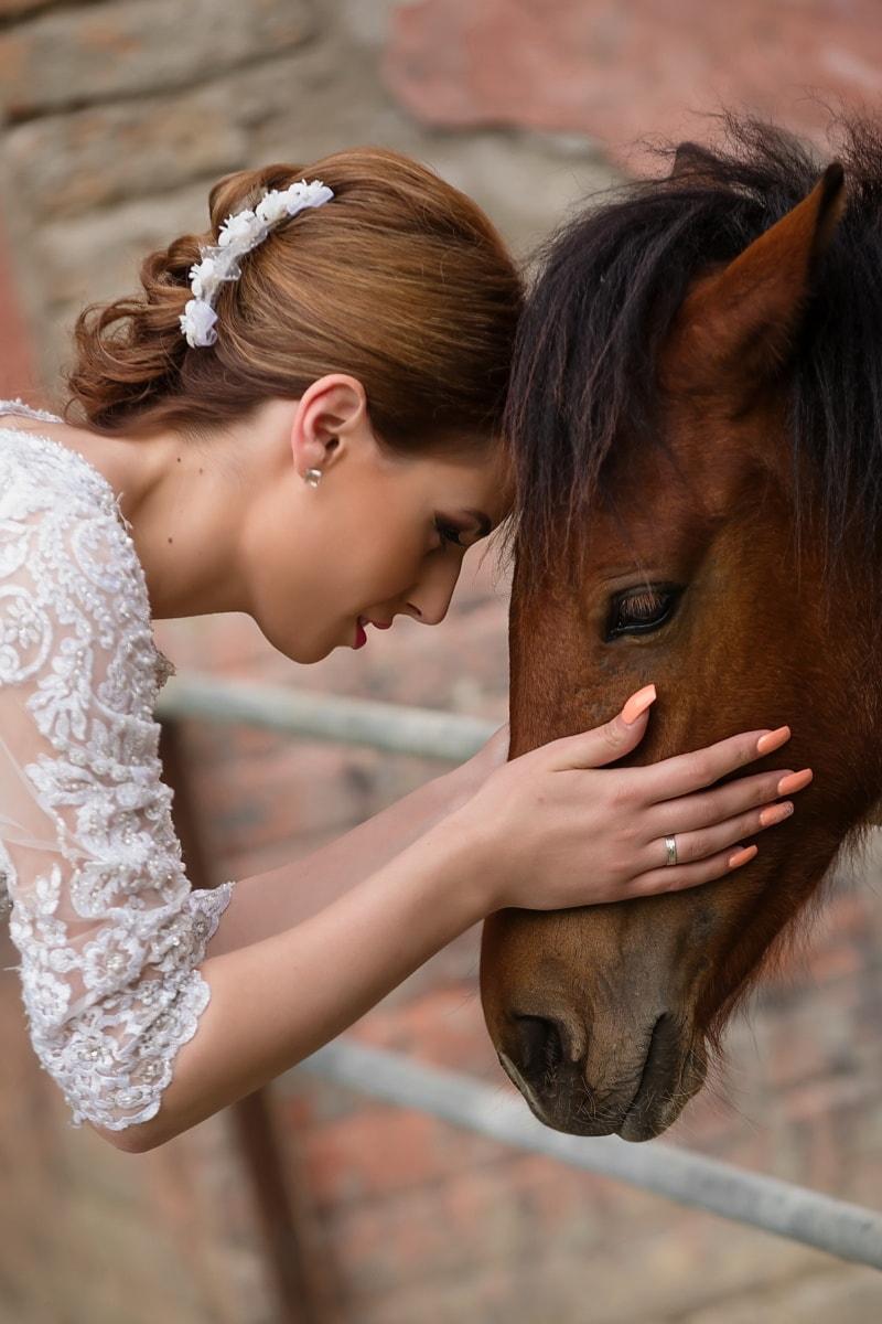 漂亮女孩, 头, 马, 宠物, 动物, 女人, 女孩, 肖像, 爱, 婚礼