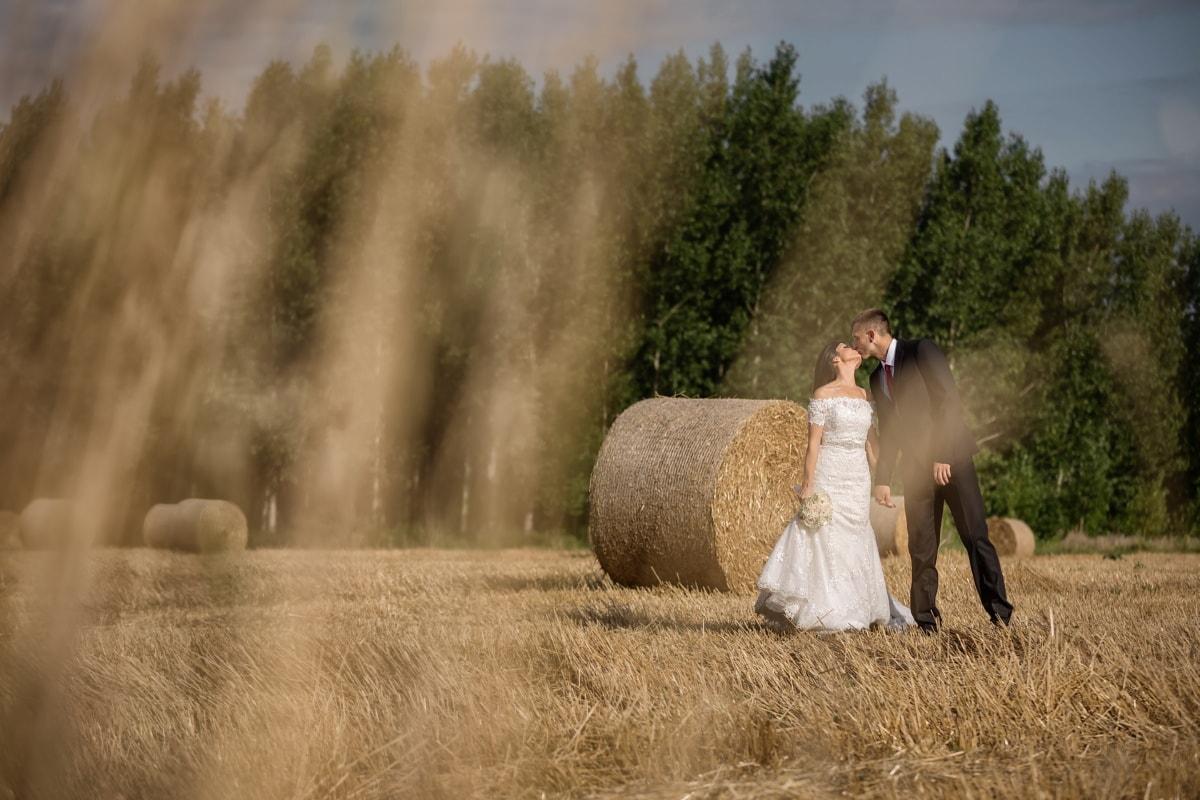 Champ de foin, botte de foin, la mariée, jeune marié, baiser, mariage, robe de mariée, Hay, Agriculture, paille
