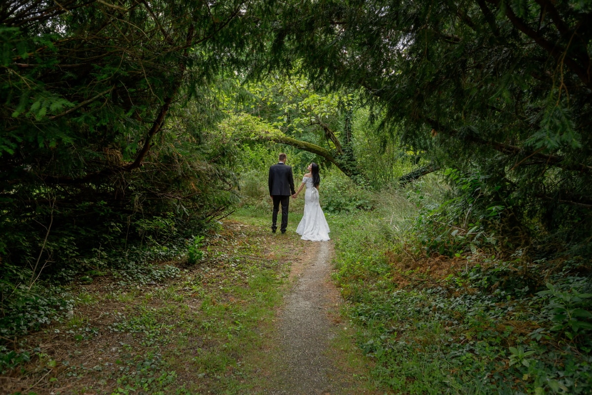forest trail, bride, groom, tree, girl, wood, forest, people, landscape, trail