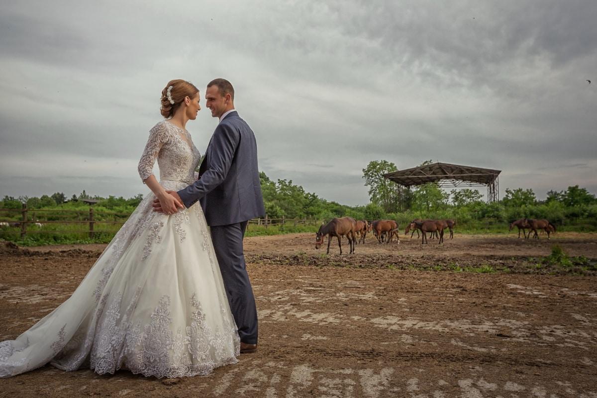 Ranch, jeune marié, bétail, chevaux, les terres agricoles, la mariée, couple, amour, marié, jeune fille