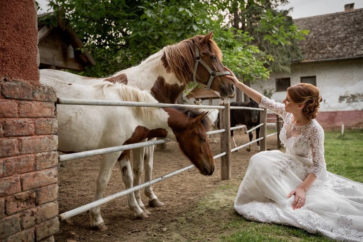 Braut, Hochzeitsort, Ranch, Hochzeitskleid, Cowgirl, Bauernhof, Pferde, Pferd, Menschen, Frau