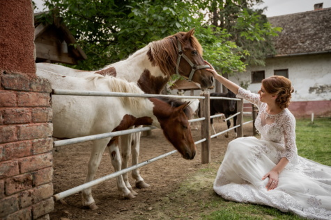 bride, wedding venue, ranch, wedding dress, cowgirl, farm, horses, horse, people, woman