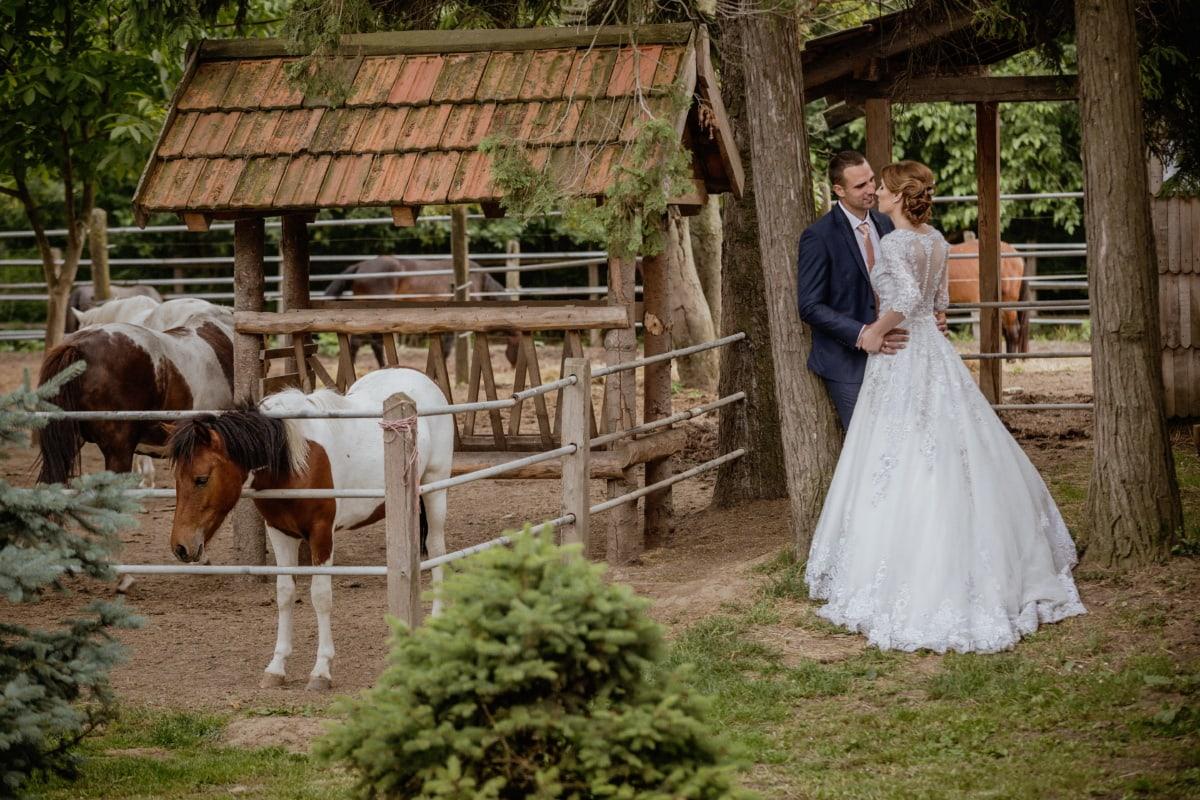 Braut, Hochzeitsort, Bräutigam, Hochzeit, Ranch, Hochzeitskleid, des ländlichen Raums, Ackerland, Menschen, Kleid