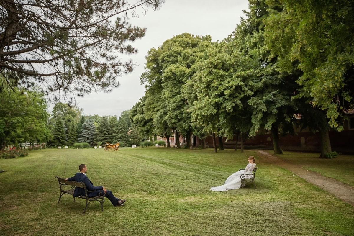 Soziale Distanz, Selbstisolation, Frau, Mann, Park, Gespräch, Entfernung, Gras, Sitzbank, Struktur