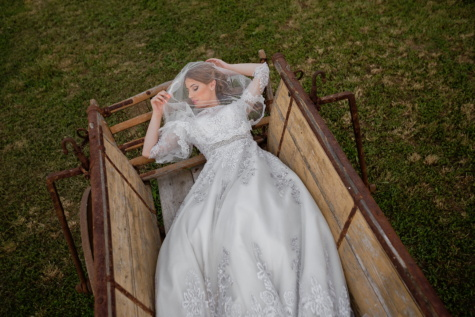 carriage, sleeping beauty, wedding dress, veil, wedding, sleeping, bride, rural, laying, farmland